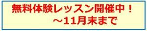 キャンペーン告知.jpg